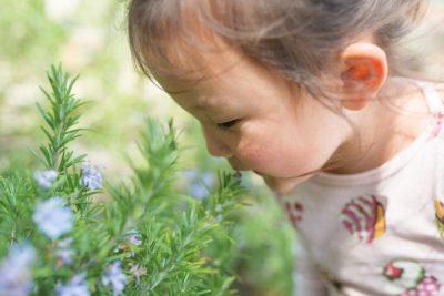植物の香りを嗅いでいる女の子