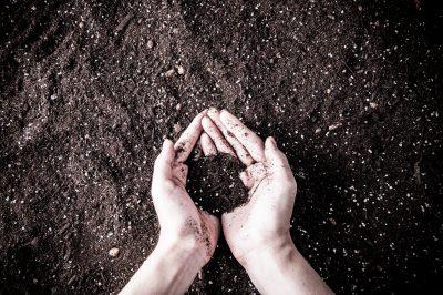 土をすくっている手