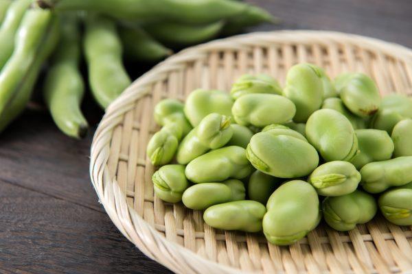 収穫されたそら豆